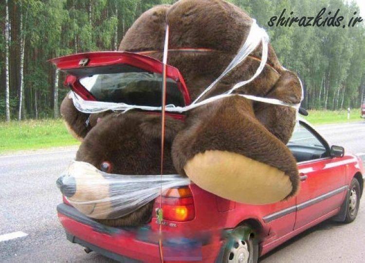 فکن این خرس رو تو برده بودی باهاش چیگار میکردی؟؟؟